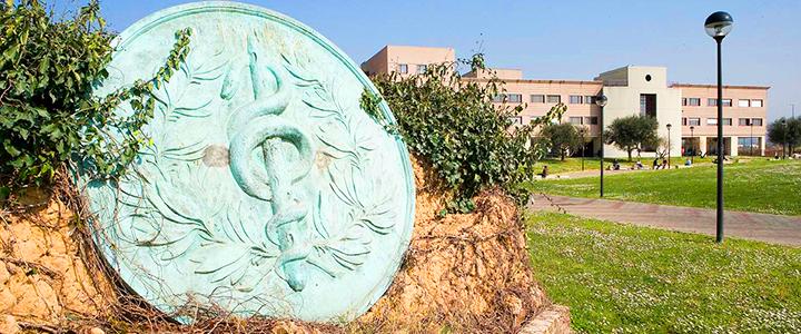 School of Medicine and Surgery | Tor Vergata University of Rome